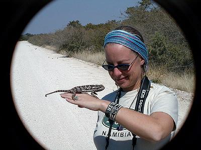 coppelia-chameleon 1 291