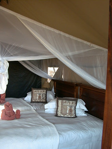 palmwag-bed 1 304