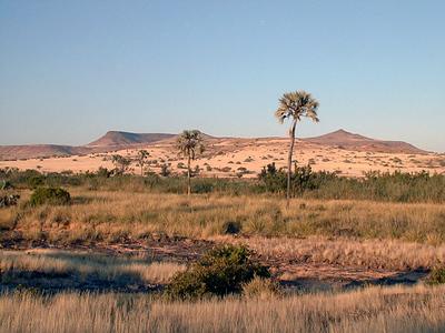 palmwag-landscape 1 337