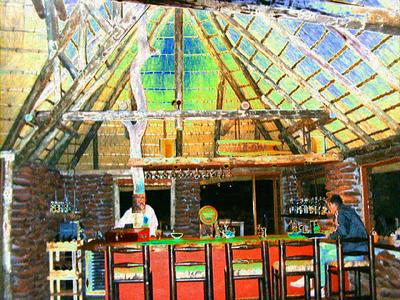 palmwag-bar-solarized 1 330