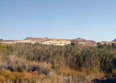 palmwag-landscape 1 309
