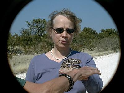 linda-chameleon 1 292