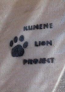 kunene-lion-project 1 370