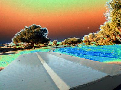 solarized- landscape-elephant-hoanib 1 524