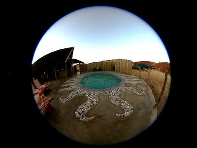 Safari Adventures #7 / Spirit Of The Namib