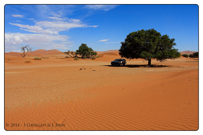 Car at Sossusvlei