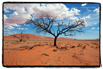 On the Sossusvlei