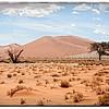 Sossusvlei Desert Dunes