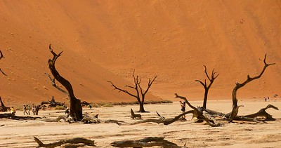 Photographers at Dead Vlei.