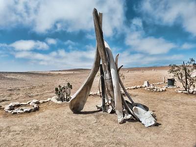 Whale bones at Cape Cross.
