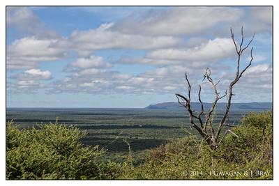 Waterberg Plateau Scenic View