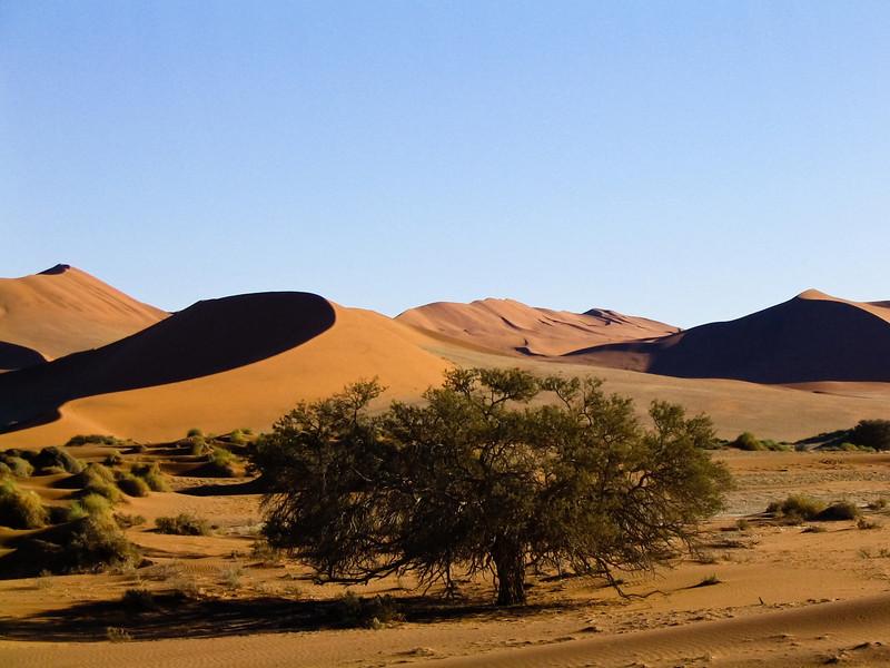 dunes at Sossusvlei, Namib-Naukluft N.P.