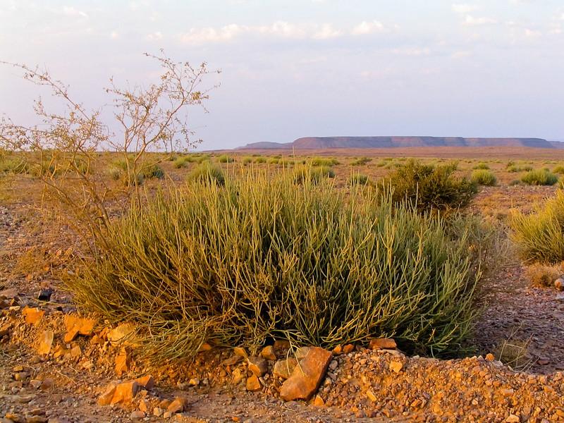 landscape near Fish river canyon