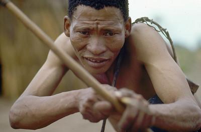 The bushmen of kalahari