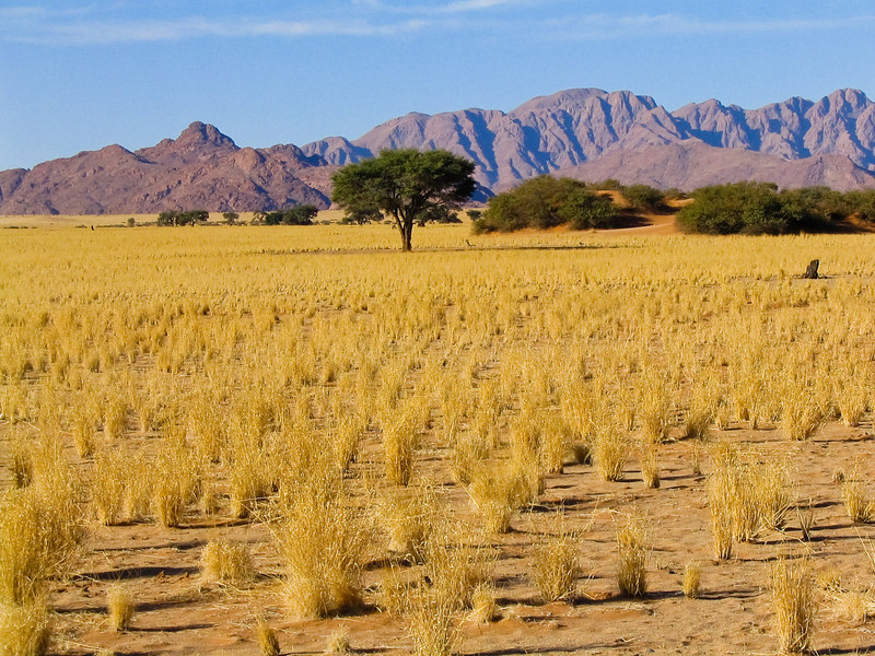 Sesriem, Namib-Naukluft National Park