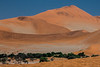 Dunes. Highest in the world. Namib-Naukluft National Park