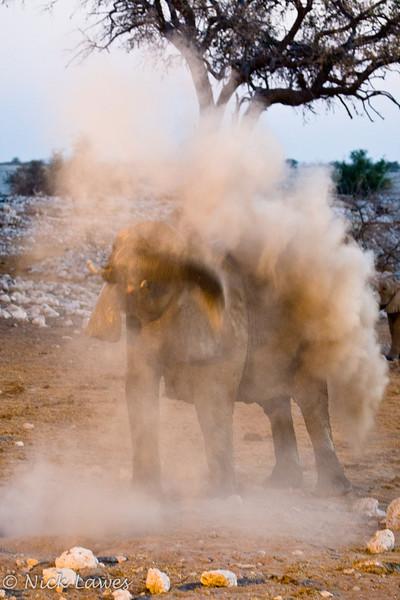 Dust bath