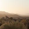 <em><b><center> Sunrise The NamibRand Nature Reserve