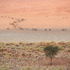 <em><b><center> Soft colors in early morning light ~  The NamibRand Nature Reserve