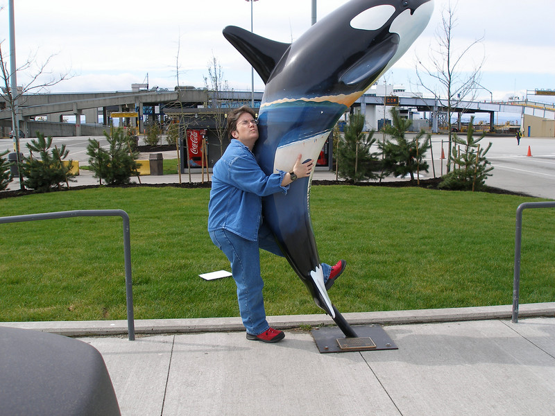 It's good luck to hug an Orca, isn't it?