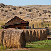 More hay and a small shed.