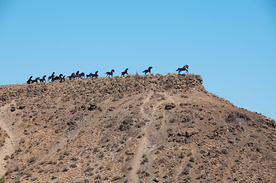 Some kind of Wild Horse Monument... hey, there's a lady up there... maybe I could climb it.