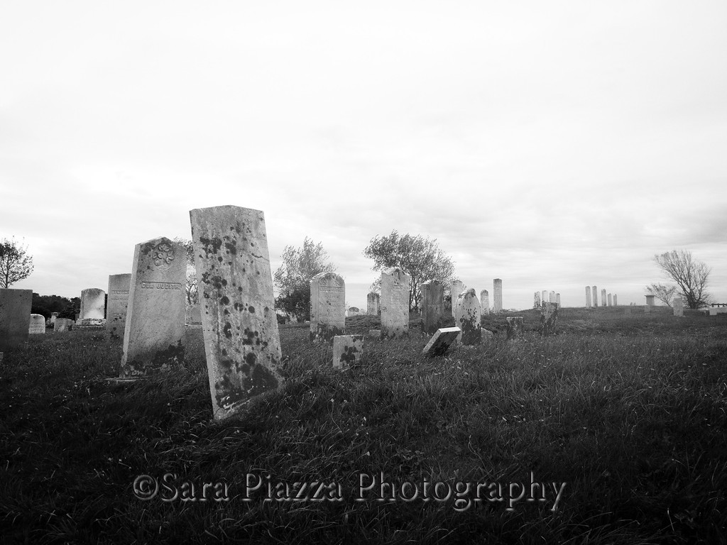 I found this hilly, wind-swept cemetery on my drive out to Cisco Beach.