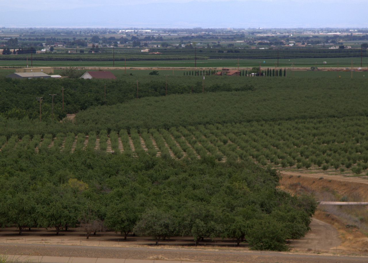 Farmland in central valley