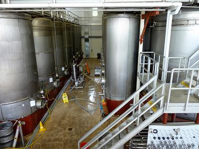 Wine fermenting vats