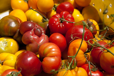 Heirloom Tomatoes, Oxbow Farmer's Market