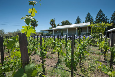 Crocker Starr Winery, St. Helena
