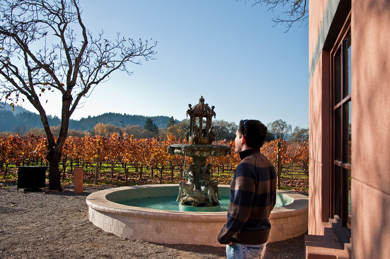 """A """"candid"""" moment of me looking onto the vastness of Napa Valley."""