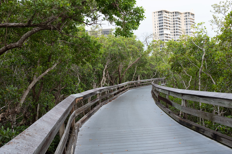 The boardwalk to the beach