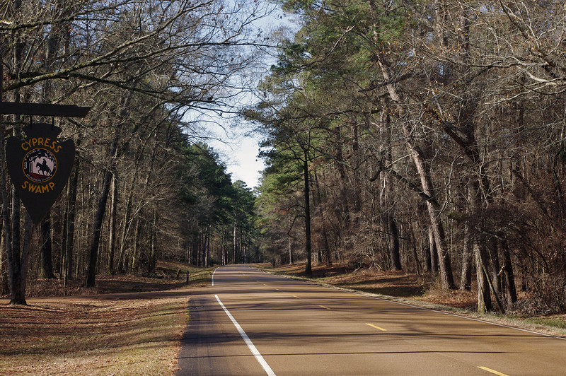 The Natchez Trace Parkway. This is around mile marker 122 in Mississippi.