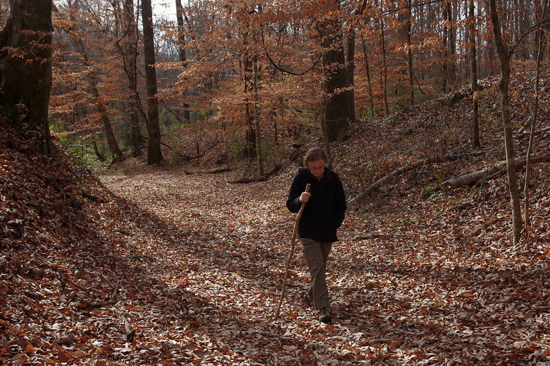 Rita hiking the old sunken Natchez Trace trail.