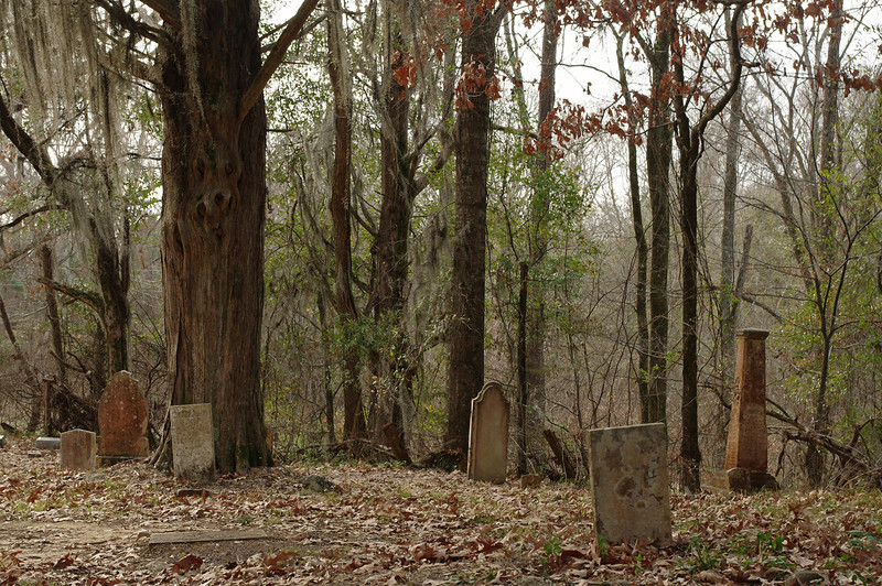 Cemetery in the woods at Rocky Falls, a ghost town on the Natchez Trace.