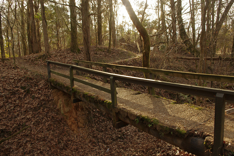 Log foot bridge at Rocky Springs, a former settlement on the Natchez Trace. Peak population around 1850 was in the thousands, but now little remains.