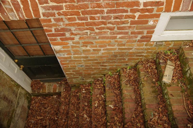 Basement stairway, Natchez, Mississippi.
