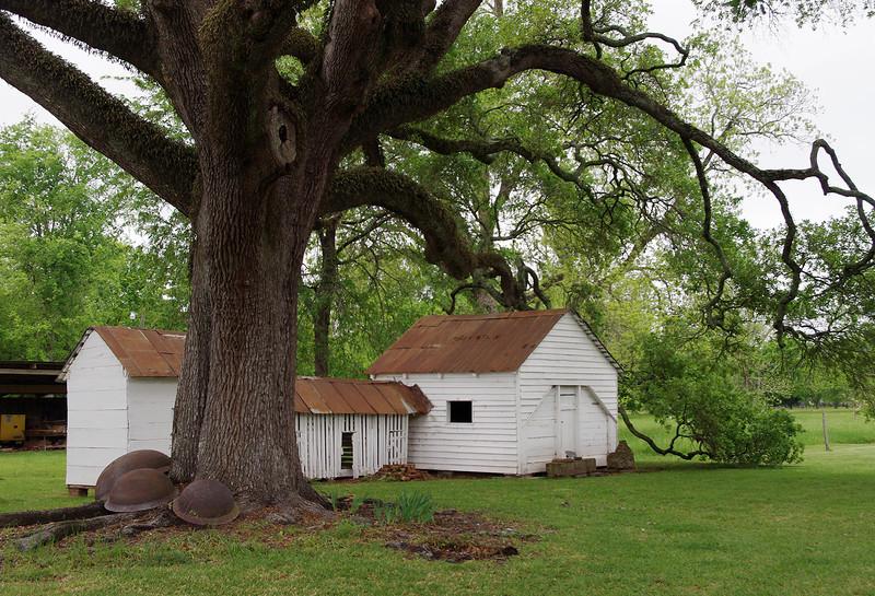 Outbuildings, Oakland Plantation, near Natchitoches, Louisiana.