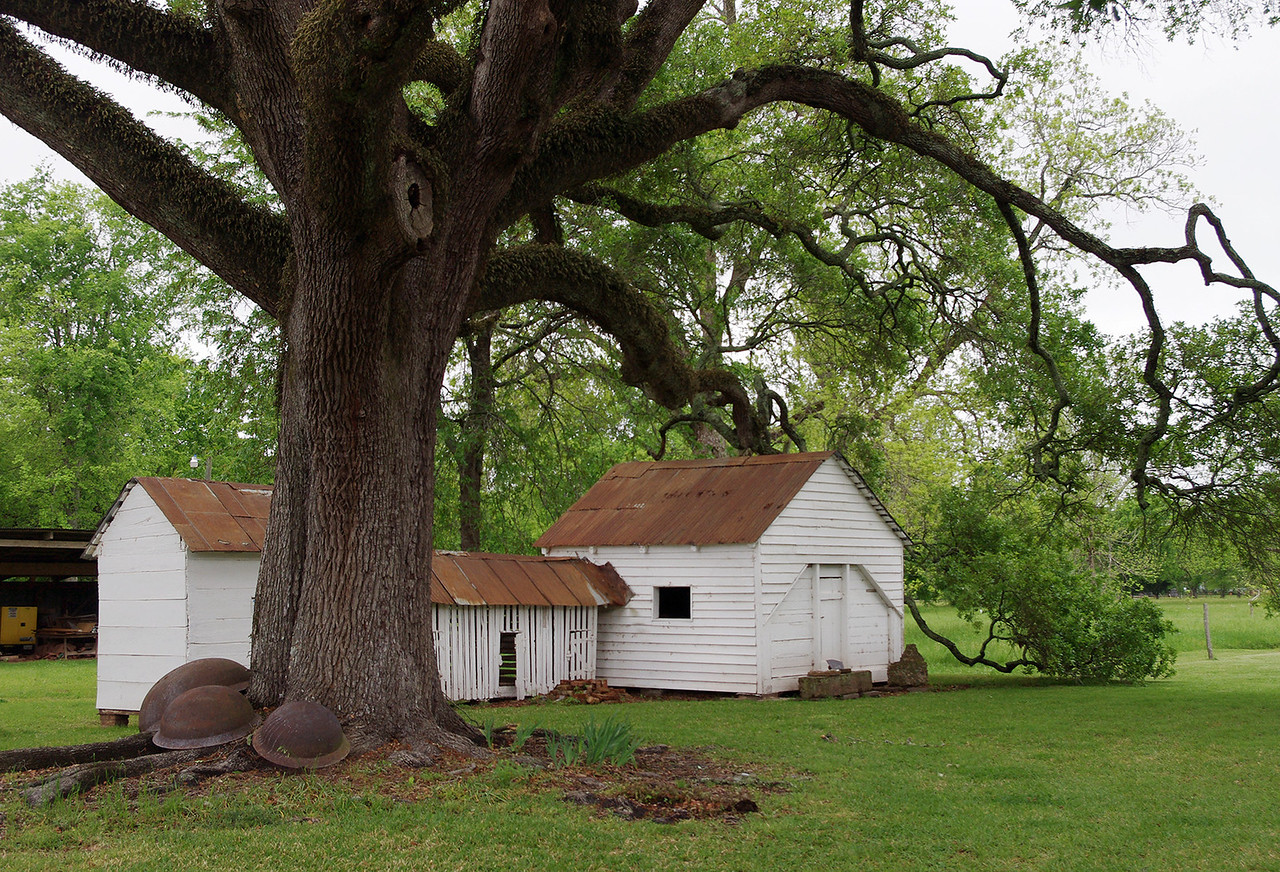 Outbuildings, Oakland Plantation, near Natchitoches, Louisiana.