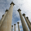 Capitol Columns at National Arboretum<br /> <br /> They were originally built as part of the east portico of the Capitol in 1828, long before the familiar Capitol dome was completed. However, when the dome was completed in 1866 it appeared as if it was not adequately supported by the columns, because the iron dome was significantly larger than the dome that the designer envisioned. In order to correct this visual illusion an addition to the east side of the Capitol was proposed, finally being constructed in 1958, and the columns were removed. They were eventually dedicated here at the new home  in 1990.