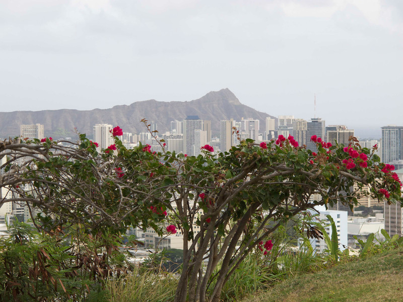 A view of Diamond Head from the grounds just outside the cemetery.