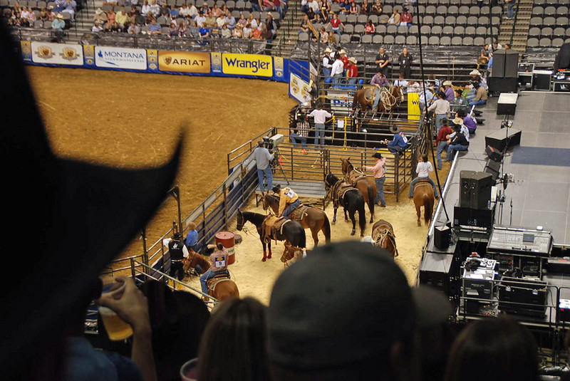 Competitors getting ready for the tie-down roping event.