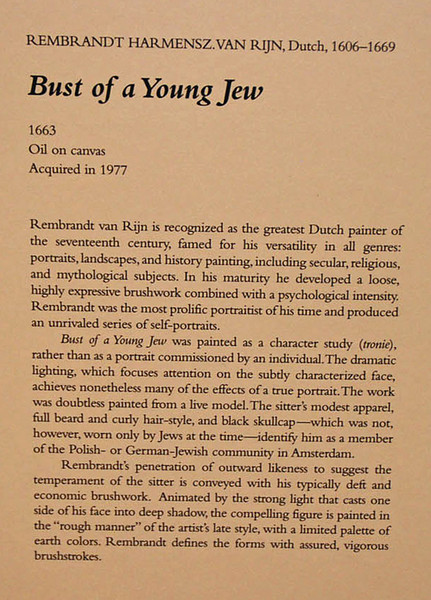 "Rembrandt van Rijn, ""Bust of a Young Jew"", Kimbell Art Museum."