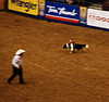 """""""Whiplash"""", the cowboy monkey, rides a border collie to round up several sheep."""