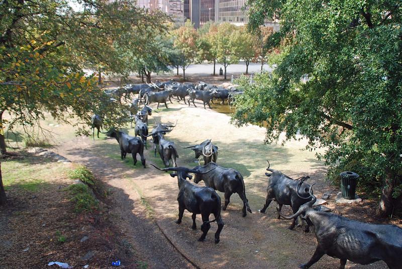 Cattle run sculpture near the Dallas Convention Center.