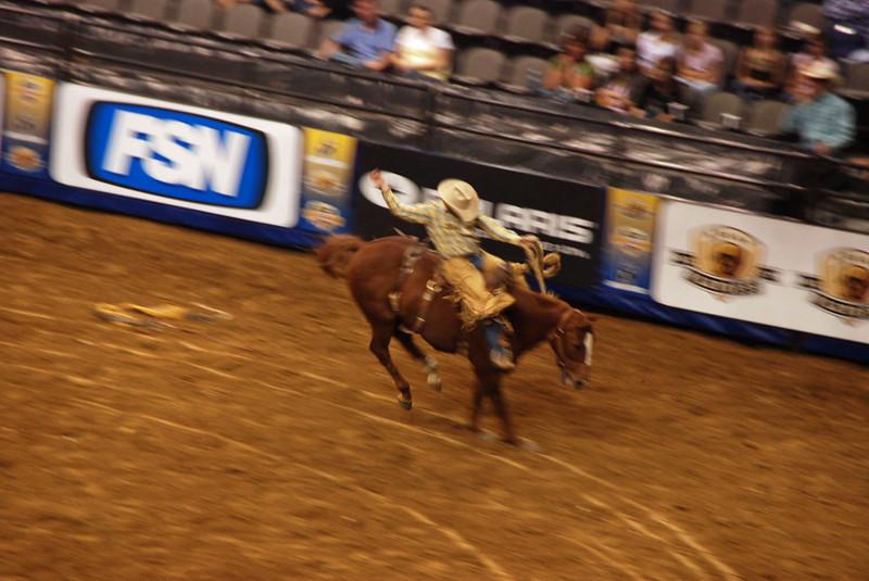 Saddle bronc riding at the rodeo.