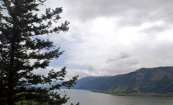 The Oregon countryside in the Columbia River Gorge.