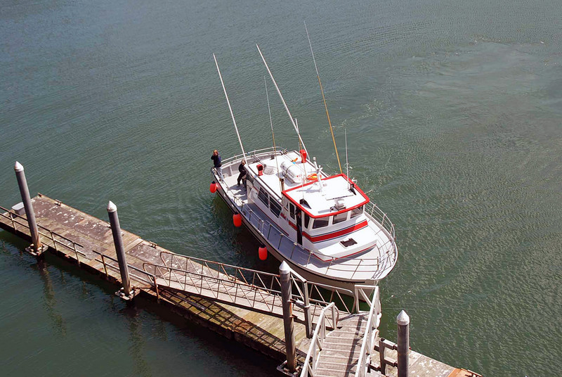 The whale watching boat.