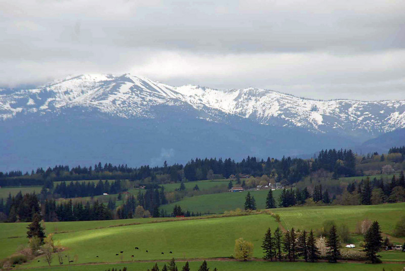 A view towards Mt Hood from the Columbia River Gorge.